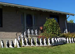 penguin lawn ornaments